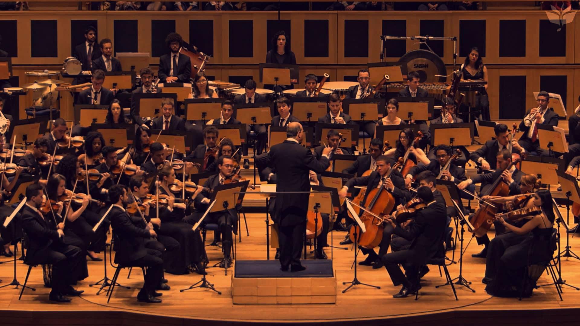 Plena Saúde oferece incentivo cultural para violoncelista da Orquestra Jovem do Estado de SP